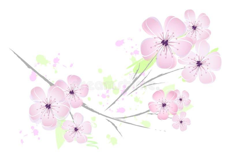 pink för blomma för blomningCherrydesign stock illustrationer