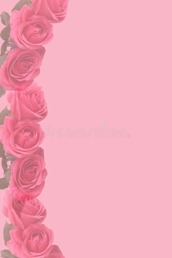Pink faded  roses stationary