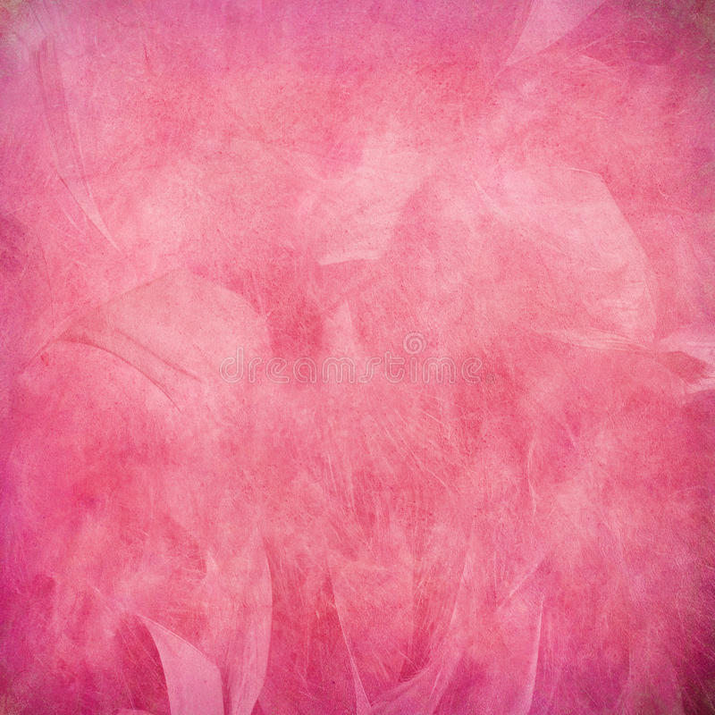 Pink feather abstract. On paper royalty free stock image