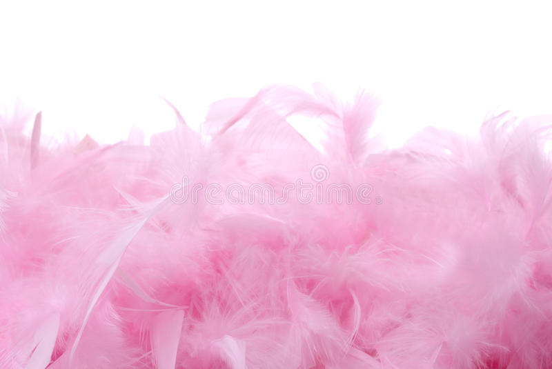 Download Pink Feathers Pile   Isolated Stock Photo - Image of bird, boas: 16720990