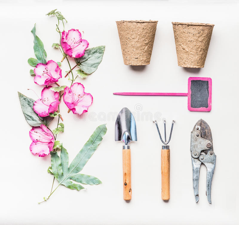 Pink female Gardening equipment flat lay for planting, weeding, pruning with garden tools, flowers plant , pots ,Shears and sign. On white table background, top royalty free stock photos