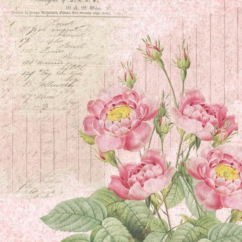 Shabby Chic Background Collage Paper - Vintage Pink Roses - Romantic - Feminine royalty free illustration