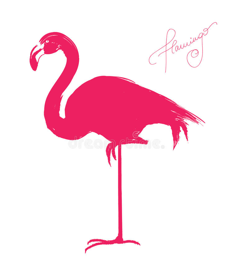 Download Pink flamingo stock vector. Illustration of hand, standing - 27000261