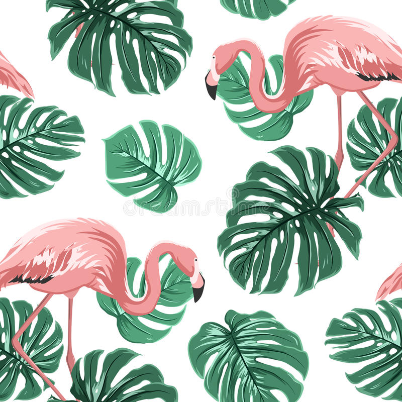 Pink flamingo birds green monstera leaves pattern vector illustration