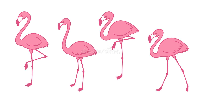 Pink flamingo Cartoon vector set Cute flamingos collection Flamingo character animal exotic nature wild fauna illustration. Tropical summer royalty free illustration
