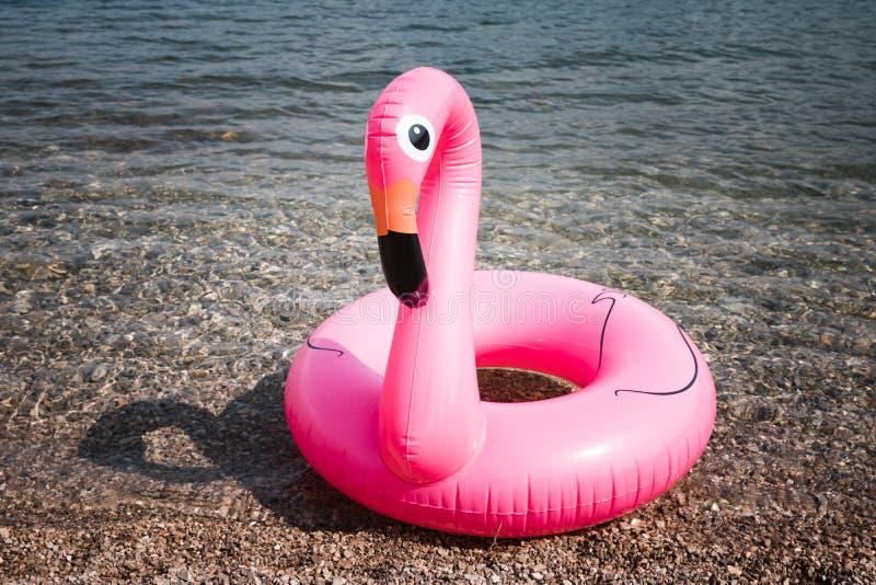 Pink Flamingo. The inflatable circle. Summer. Sea stock photo