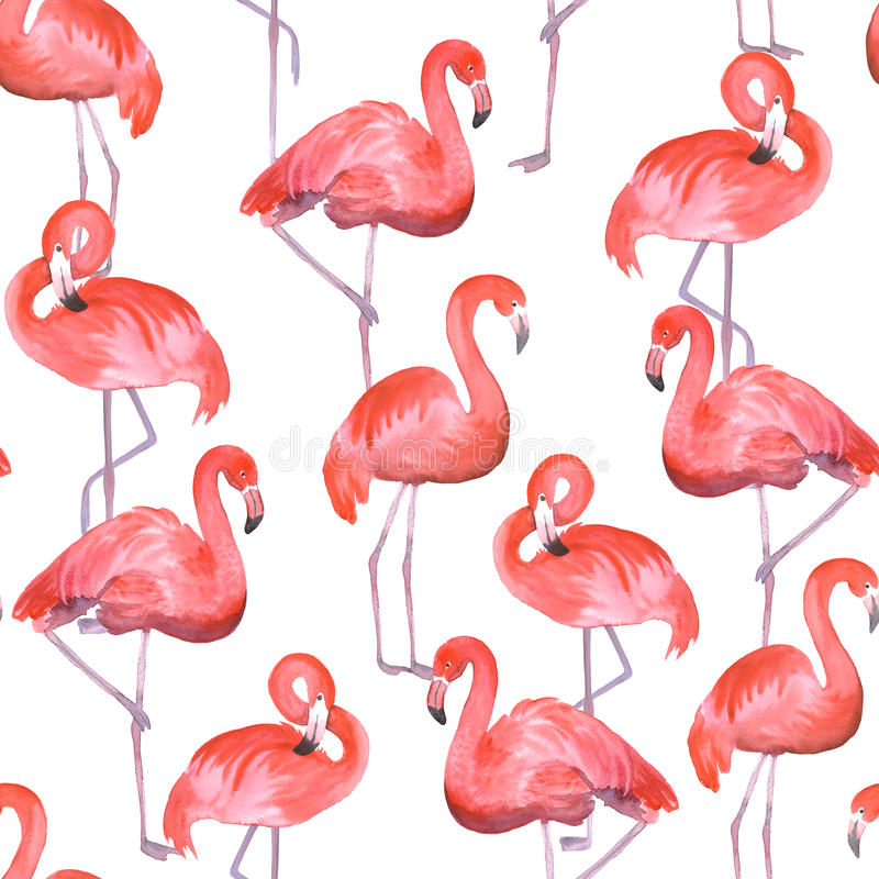 Pink flamingo seamless royalty free illustration