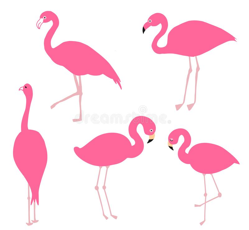 Pink flamingo set, illustration. stock illustration