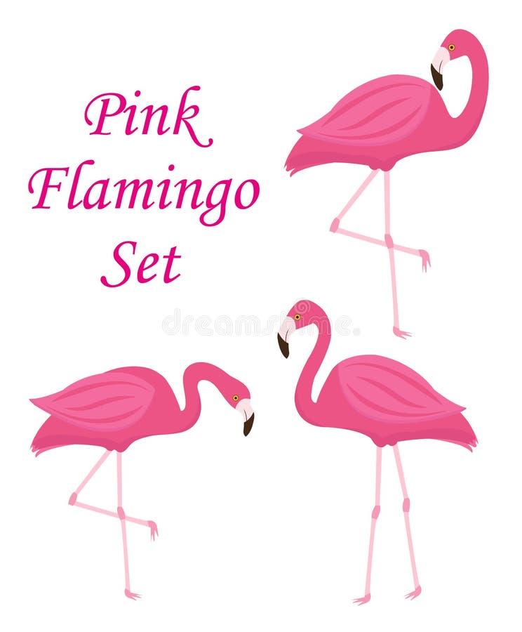 Pink flamingo set of objects. Isolated on white background. Vector illustration. stock illustration
