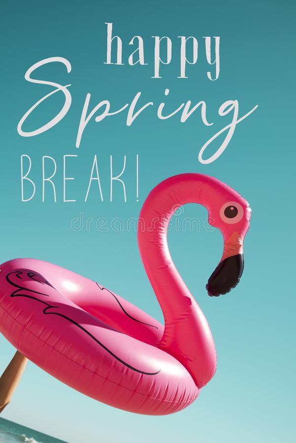 Pink flamingo and text happy spring break royalty free stock images