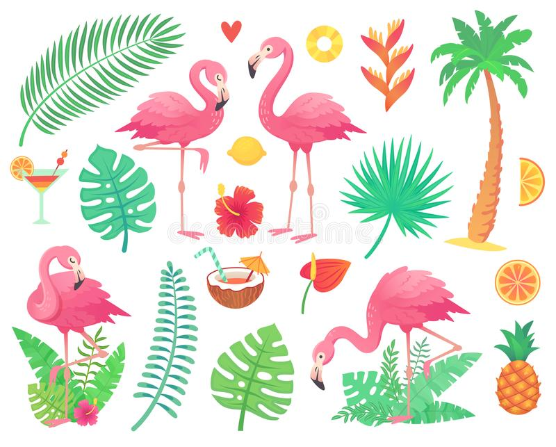 Pink flamingo and tropical plants. Beach palm, african plant leafs, rainforest flower, tropic palms leaf and rosy vector illustration
