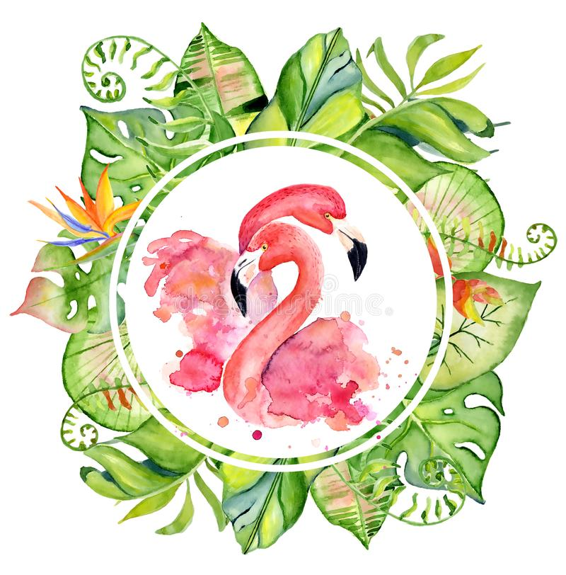 Pink flamingo watercolor hand drawn illustration in arrangement with green tropical plants, exotic monstera and banana leafs stock illustration