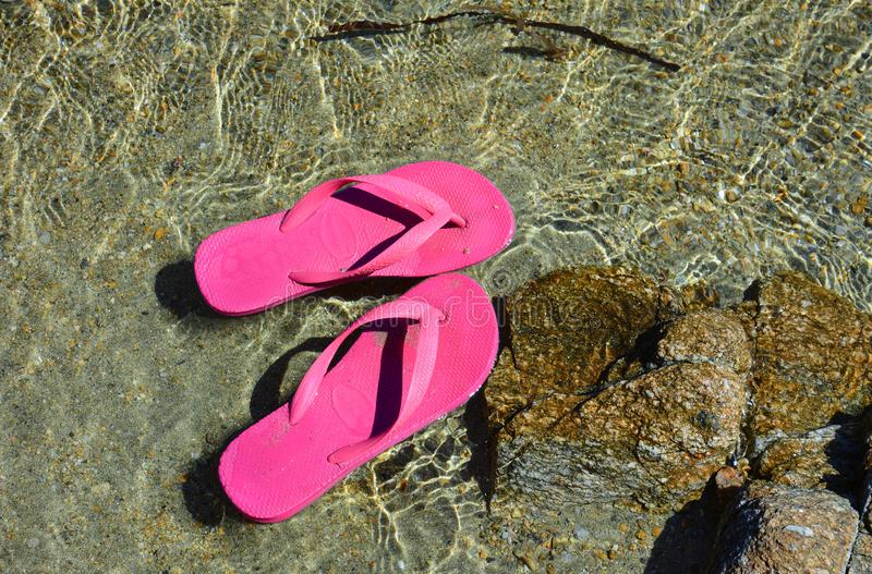 Pink flips flops floating in the sea water royalty free stock photo