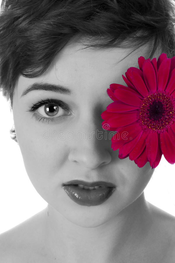 Download Pink Flower stock image. Image of european, love, girl - 20983455