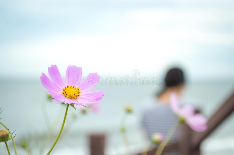 Pink flower with a girl background. In seaside stock photo