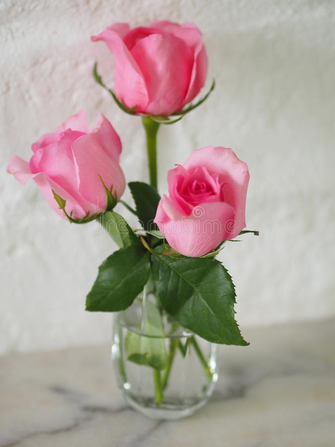 Pink flower in glass on white marble table. Closeup pink flower in glass on white marble table beautiful stock photo