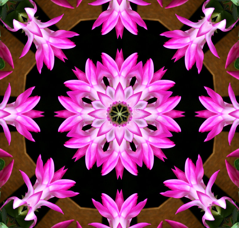 Pink Flower Kaleidoscope stock images