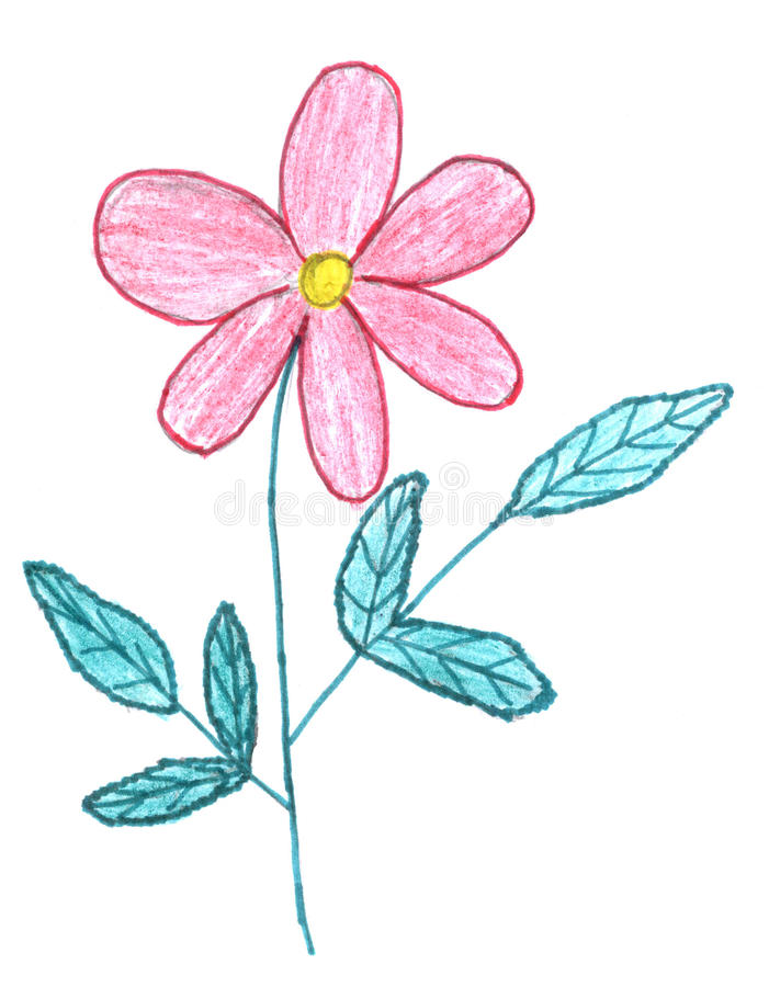 Download Pink Flower Sketch Stock Photos - Image: 12990583