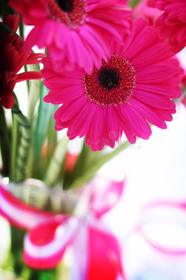 Download Pink flowers stock photo. Image of tenderness, arrangement - 845680