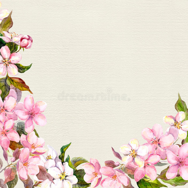 Pink flowers - apple, cherry blossom. Floral frame. Vintage watercolor on paper background royalty free illustration
