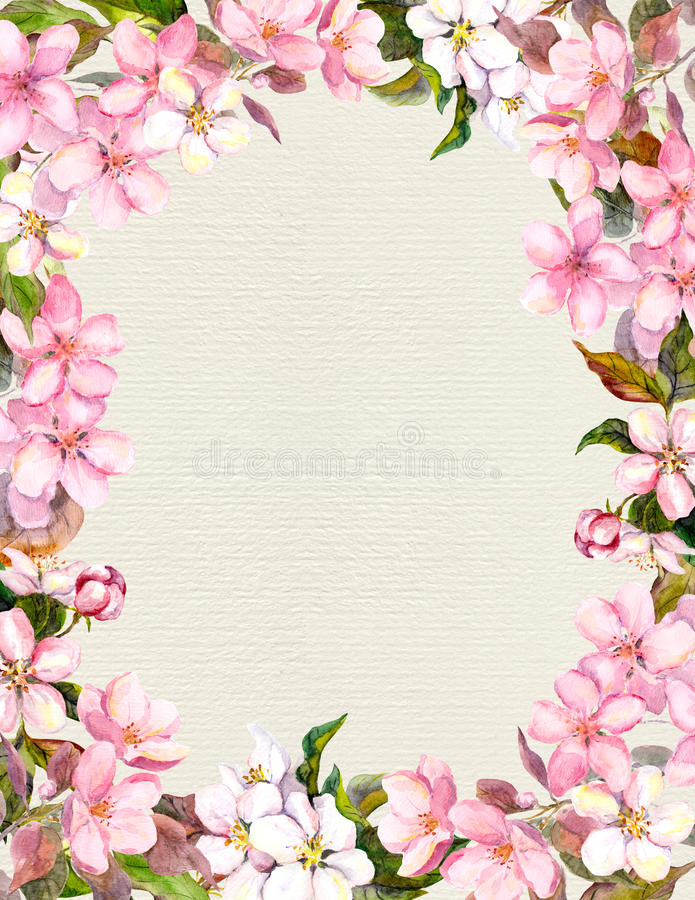 Pink flowers - apple, cherry blossom. Floral vintage frame for retro postcard. Aquarelle on paper background. Pink flowers - apple, cherry blossom. Floral vector illustration