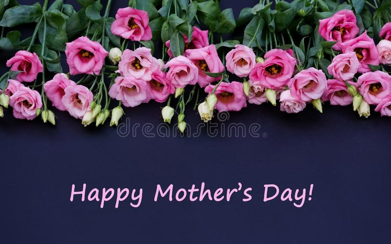 Pink flowers on black background. With text happy mother`s day stock photography