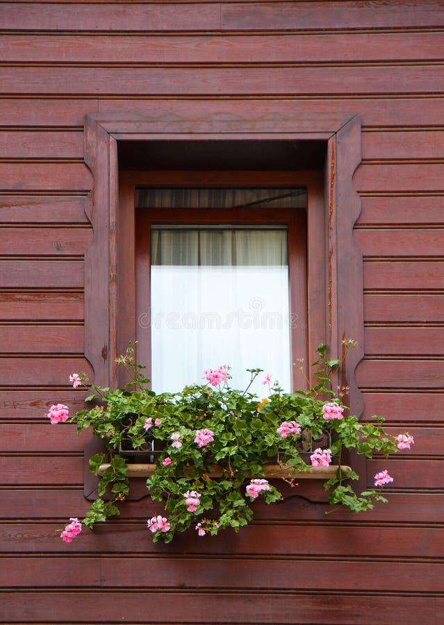 Pink Flowers In Brown Window Stock Image