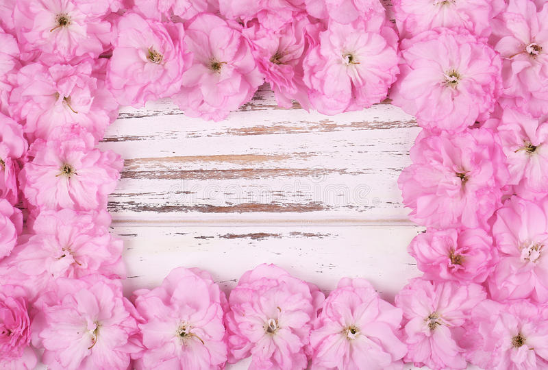 Pink Flowers Frame over Old Wooden Background stock photography