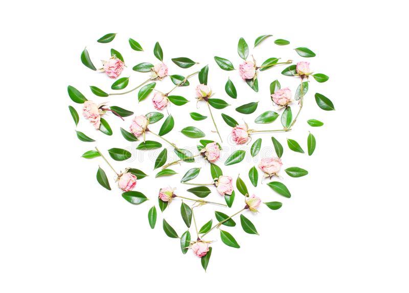 Pink flowers, green leaves in the shape of a heart on a white ba stock photo