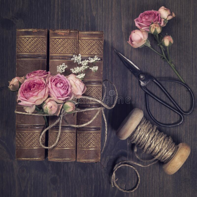 Pink flowers and the old books royalty free stock photo