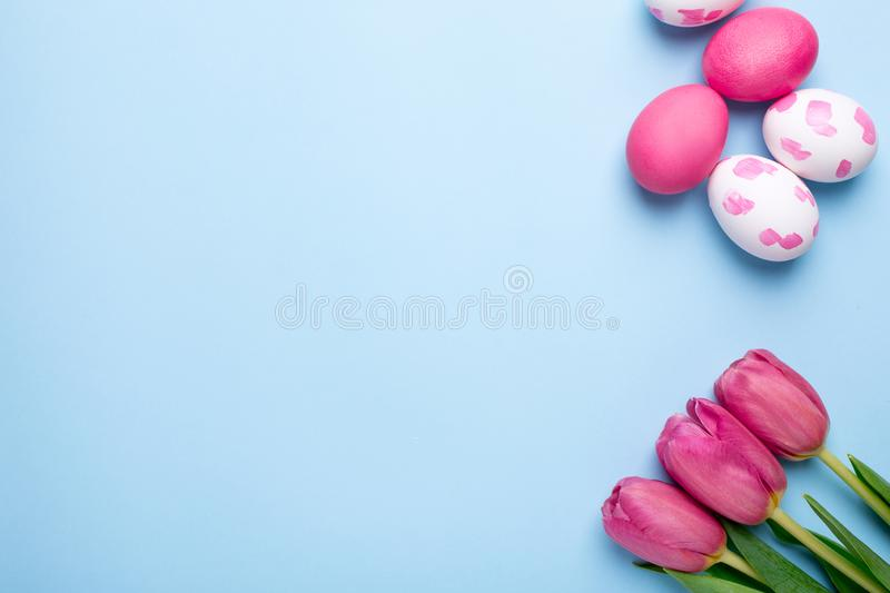 Pink flowers tulips and easter eggs on a blue background stock photography
