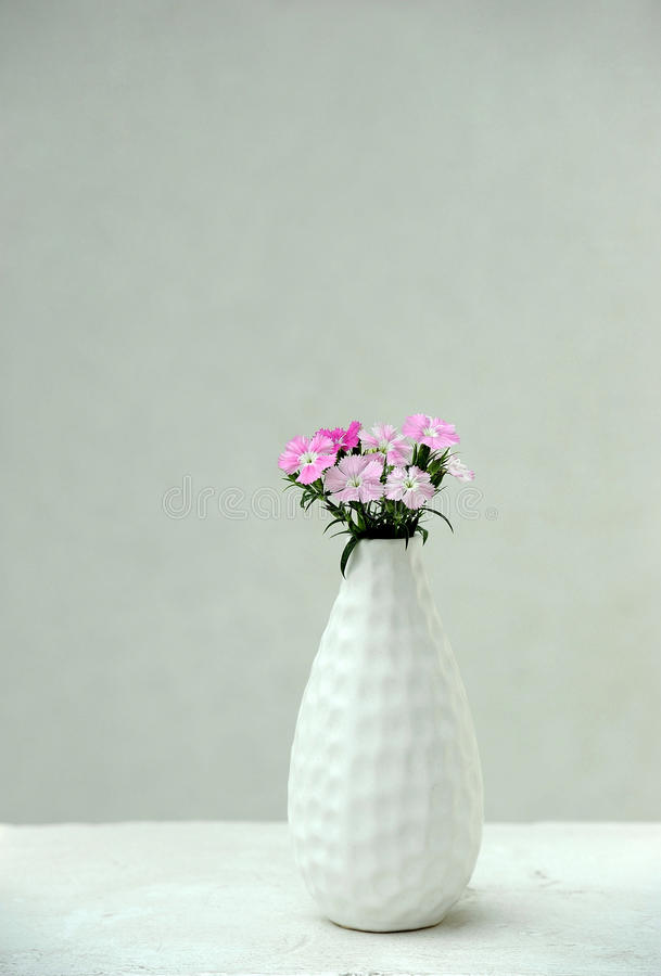 Pink flowers in a vase royalty free stock photo