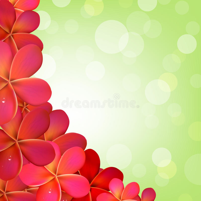 Pink Frangipani Frame With Bokeh vector illustration