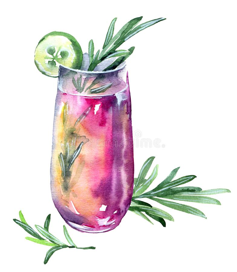 Cucumber and rosemary cocktail. Pink fresh cocktail with rosemary and cucumber in high glass , watercolor illustration on a white background stock illustration