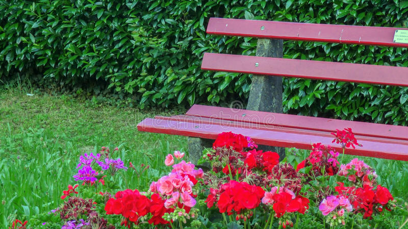 Pink garden outdoor bench with flowers and accessories. A pink garden outdoor bench with pink flowers and accessories stock images