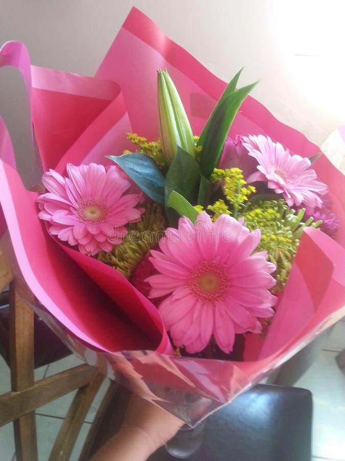 Pink Gerbera daisies flower bouquet royalty free stock photos