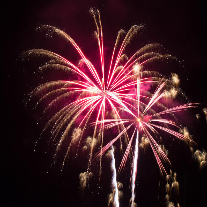 Pink and Gold Fireworks stock photography