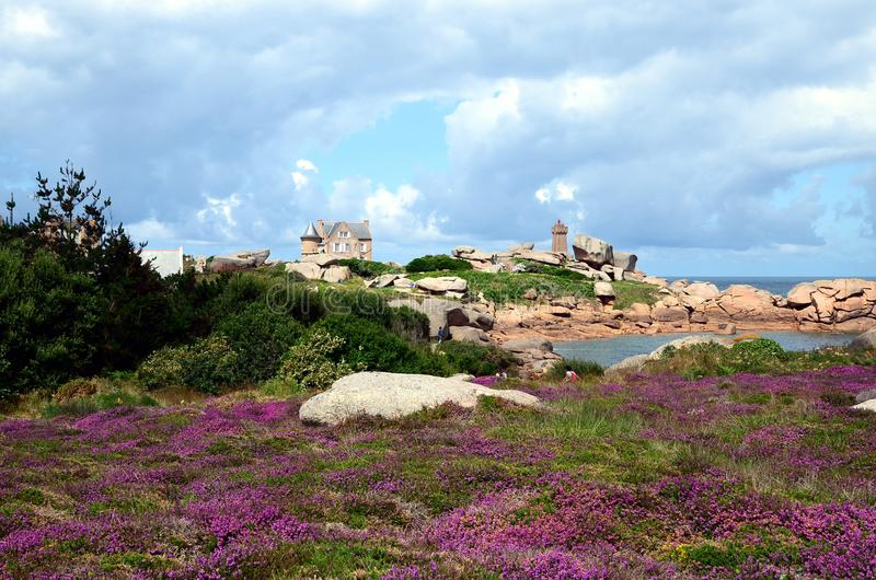 Beautiful field of wild flowers with the Phare de Ploumanac`h officially the Mean Ruz Lighthouse at the background. Cote de Granite Rose or Pink Granite Coast royalty free stock images