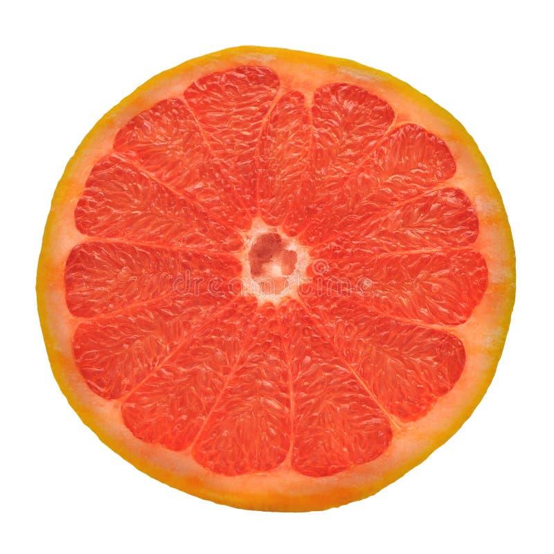 Pink Grapefruit royalty free stock photo