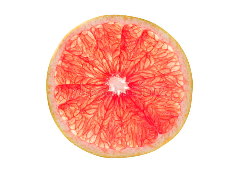 Pink grapefruit slice stock photography