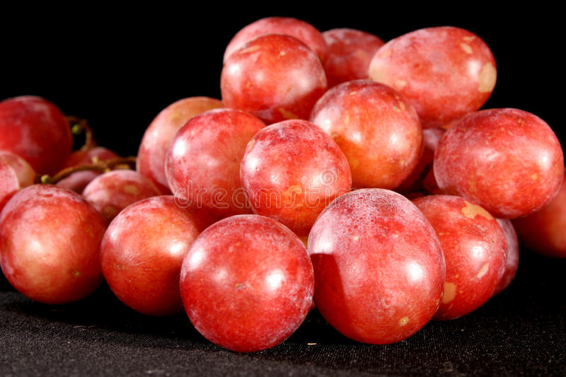 Pink grapes branch stock images