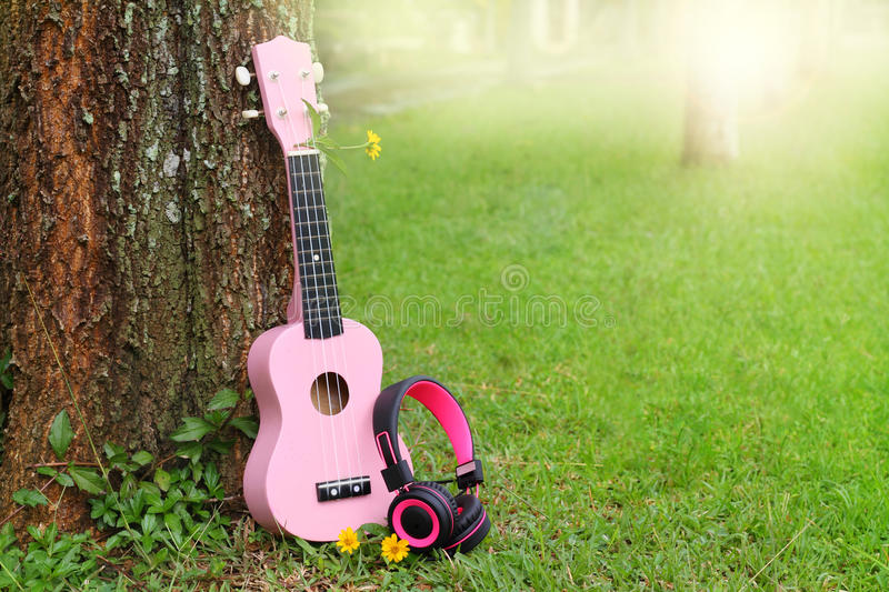 Pink headphones and ukulele music on green grass background.  stock images
