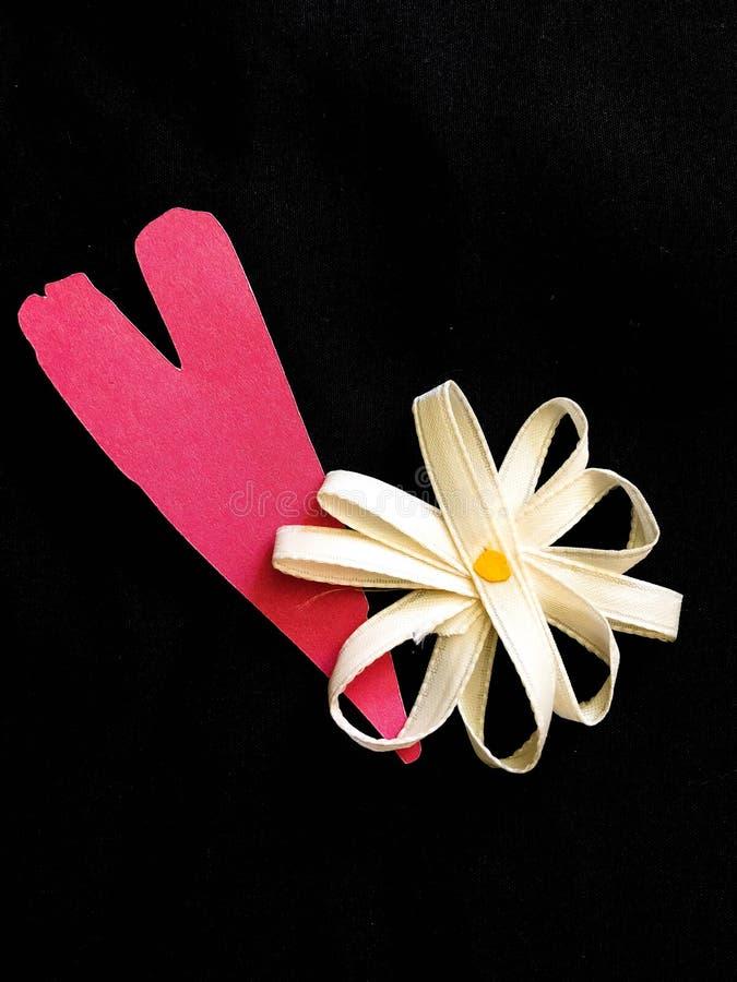 Pink Hear and Ribbon Daisy stock photos