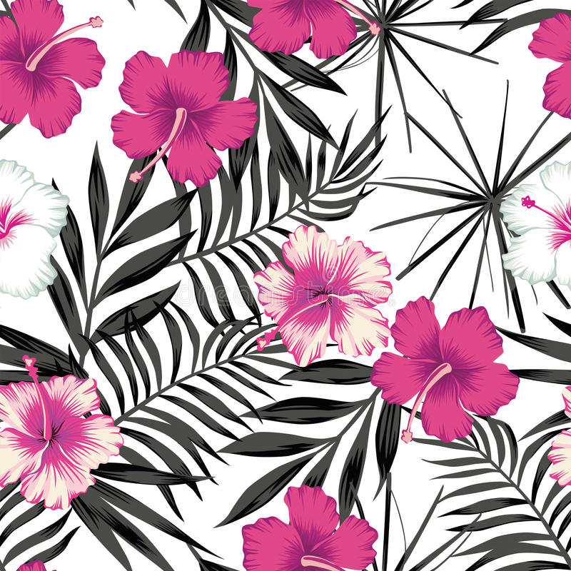 Pink hibiscus on the black leaves seamless background vector illustration