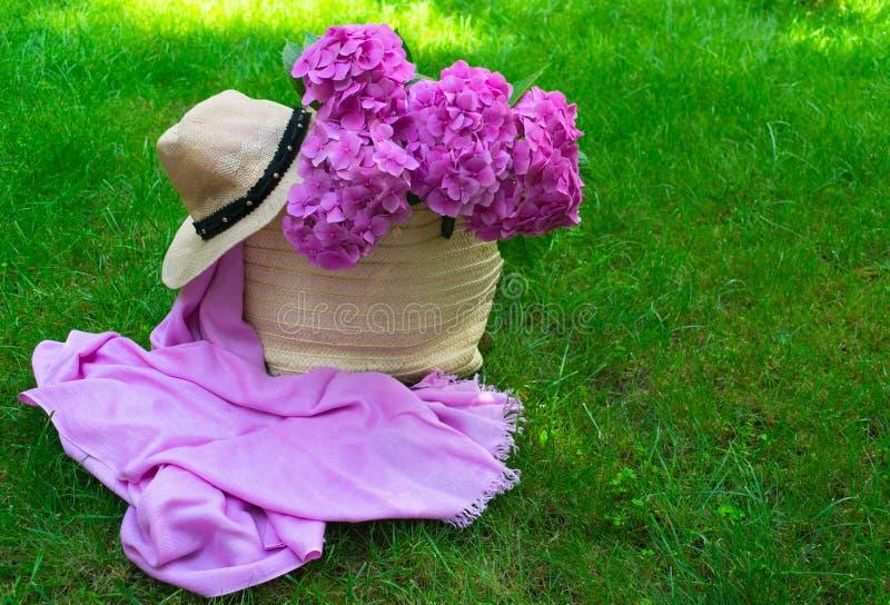 Pink hydrangea flowers in a wicker basket on juicy green grass stock image