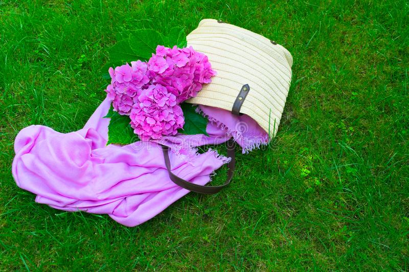 Pink hydrangea flowers in a wicker women`s summer bag on a lush green grass. Copy space. royalty free stock photo