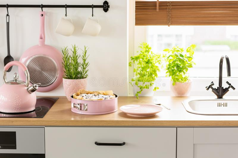 Pink kettle and cake on wooden countertop in bright kitchen inte. Rior with plants and pan. Real photo concept stock photo