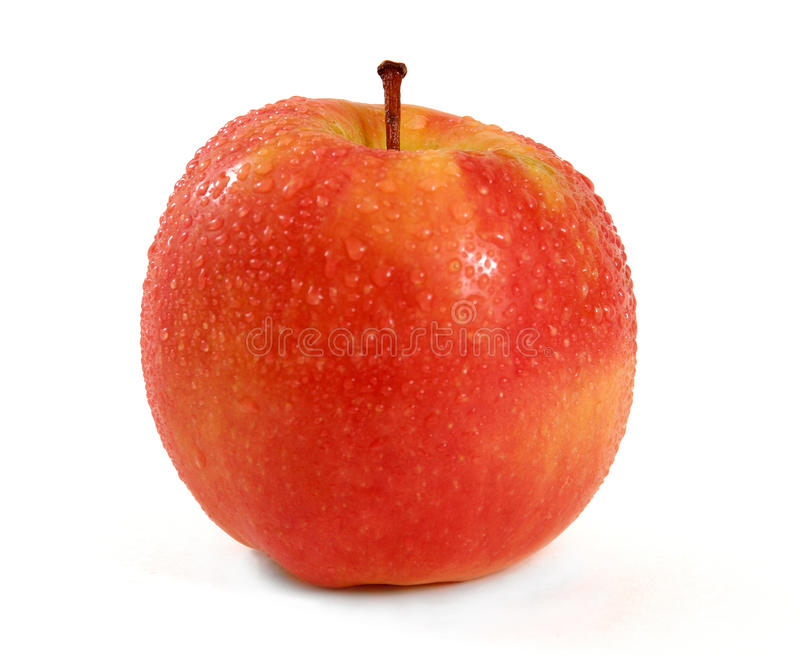 Pink Lady Apple. A ripe, juicy, Pink Lady apple, with water drops, and isolated white background royalty free stock photography