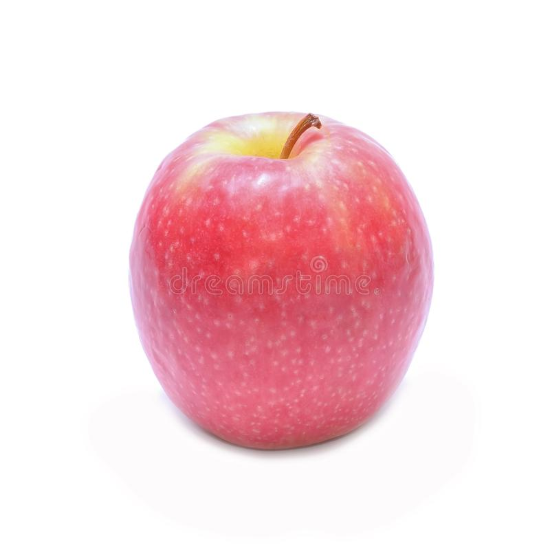 Pink Lady apple. In studio royalty free stock photography