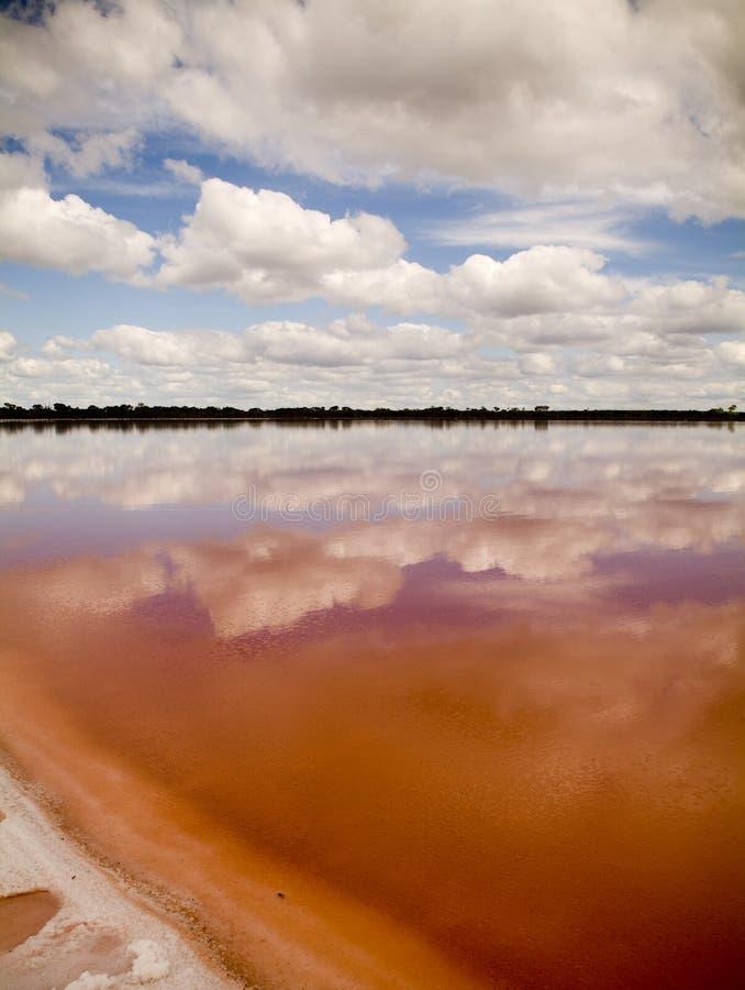 Pink Lake. The remarkable salt lake, Pink Lake, not far from Dimboola, Australia royalty free stock images
